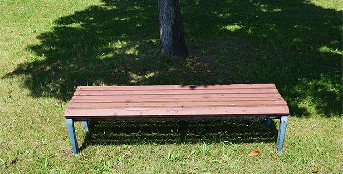 晴れた日の公園のベンチ